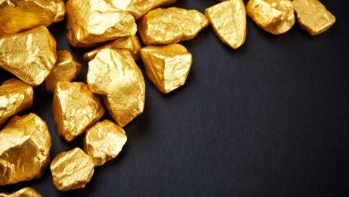 gold_backed_crypto