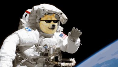 شرکت SpaceX - دوج کوین - دیجینوست