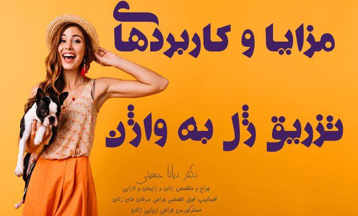 تزریق-ژل-به-واژن-ناحیه-تناسلی-مشهد---دکتر-دیانا-حسینی
