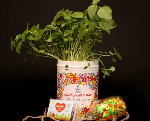 گلدان تبلیغاتی سبز