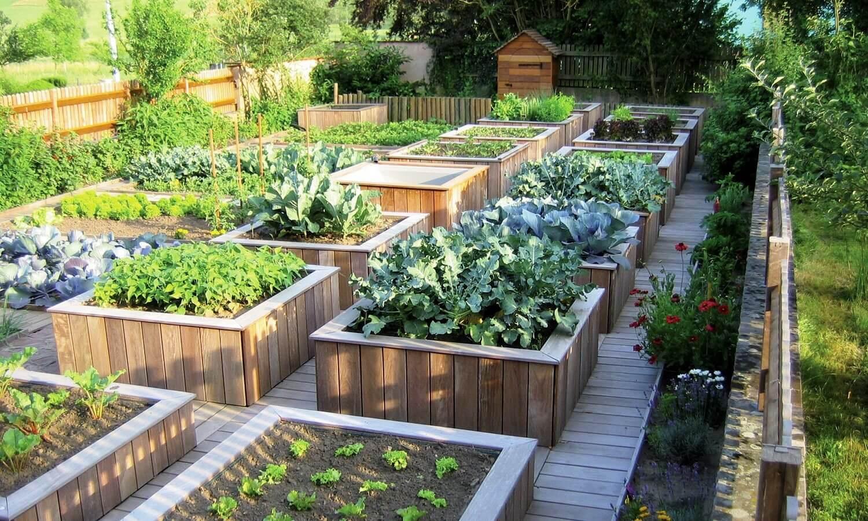 باغبانی شهری