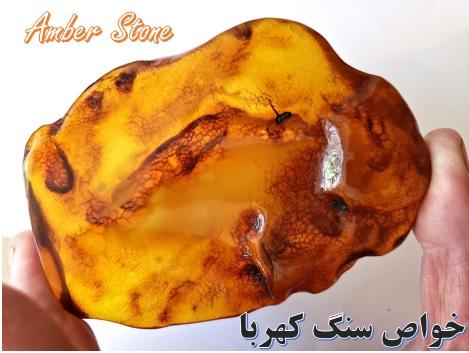 کهربا ✔️ خواص سنگ ✔️ قیمت سنگ ✔️ کهربای صنعتی ✔️ شارژ سنگ ✔️ خواص در طب سنتی ✔️ بوی کهربای اصل ✔️ Amber ✔️ سایت جواهر سایت