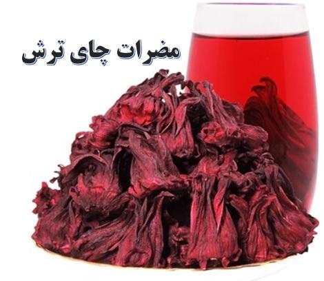 کشت چای ترش ✔️ مضرات چای ترش ✔️ قیمت چای ترش ✔️ طرح توجیهی کشت چای ترش ✔️ نحوه کاشت چای ترش در ایران