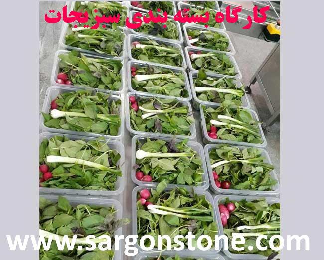 ✔️ راه اندازی کارگاه بسته بندی سبزیجات✔️ سرمایه گذاری ✔️ مشکلات راه اندازی کارگاه بسته بندی سبزیجات ✔️ سبزی های پاک شده ✔️ خردکردن سبزیجات ✔️ حمل سبزیجات ✔️ فرآیند بسته بندی سبزیجات ✔️ سبزیجات آماده و شسته شده