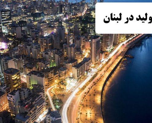 ✔️ خط تولید در لبنان ✔️ مهاجرت به لبنان ✔️ مهاجرت کاری به کشور لبنان ✔️ زندگی مردم لبنان ✔️ مزایای کشور لبنان