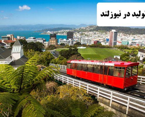 ✔️ خط تولید در نیوزلند ✔️ مهاجرت به نیوزلند ✔️ مهاجرت کاری به نیوزلند ✔️ نرخ بیکاری در کشور نیوزلند ✔️ مزایای زندگی در کشور نیوزلند