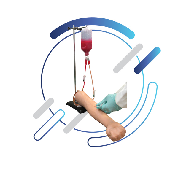 Training Moulage: Intravenous Injection and Blood Sampling Training Moulage (IV model)