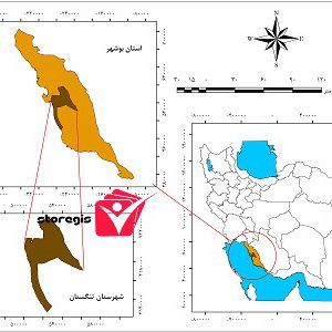 دانلود نقشه موقعیت شهرستان تنگستان