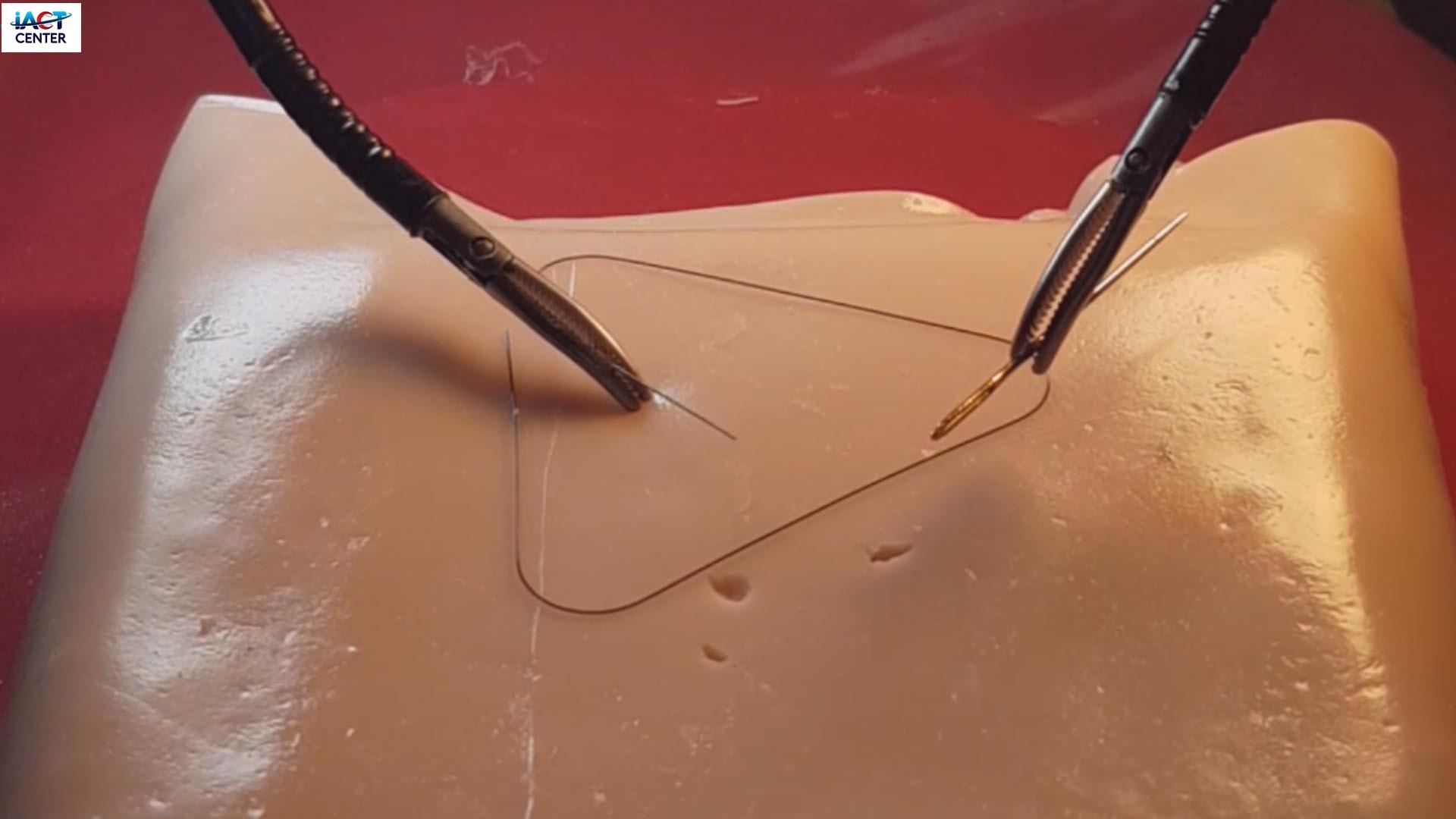 Robotic surgery on phantom and ex-vivo animal tissue